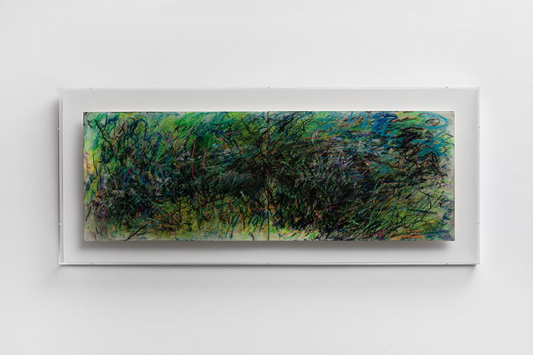 28 - 植物园·夏 Botanical Garden in Summer - 2019 - 纸本丙烯水墨、炭笔 Acrylic, Ink and Charcoal on Paper - 29x83cm.JPG